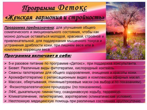 Детокс Жен. гар. и стройность-1